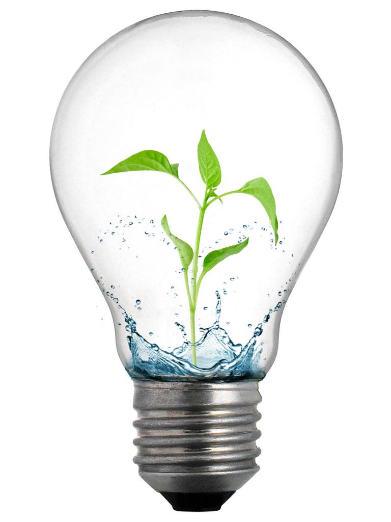 Eco LED Bulb