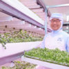 Seeing Edible Green with LED Lighting