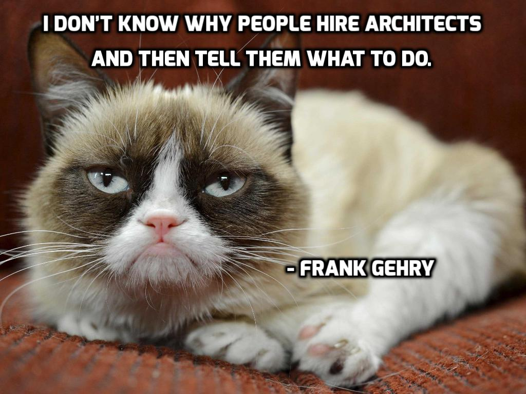 Frank Gehry, architect, quote, grumpy cat