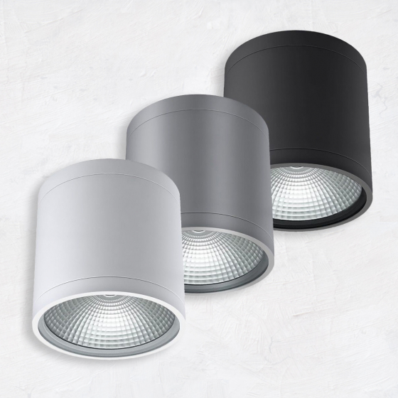 Image 1 of Alcon 11236-DIR Pavo Architectural LED 6 Inch Cylinder Ceiling Light