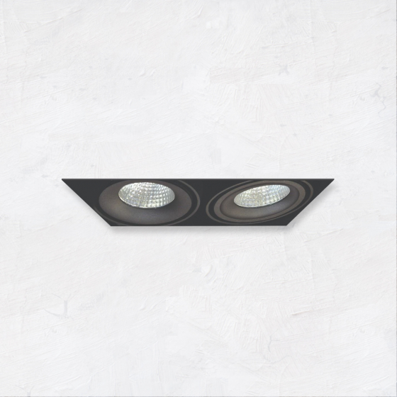 Image 1 of Alcon 14026-2 Oculare 2-Head Trimless Adjustable LED Recessed Light