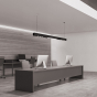 Image 2 of Alcon 15100-P Linear Pendant LED Modular System