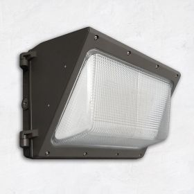 Alcon 11146 Architectural LED Wall Pack with Color Temperature Tuning