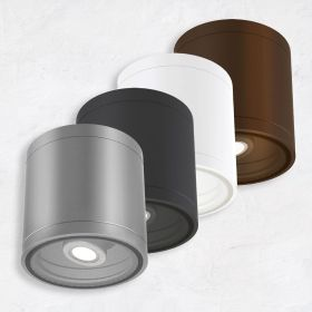Alcon 11236-ADJ Pavo Architectural LED 6 Inch Adjustable Cylinder Ceiling Light