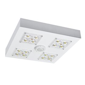 Alcon 16000 Low-Profile LED Canopy Light