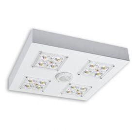 Alcon 16000 Low Profile LED Canopy Light