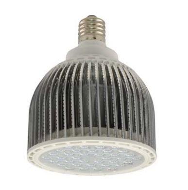 Neptun 45 Watt PAR56 LED Retrofit Lamp 120V LED-95645-UNV