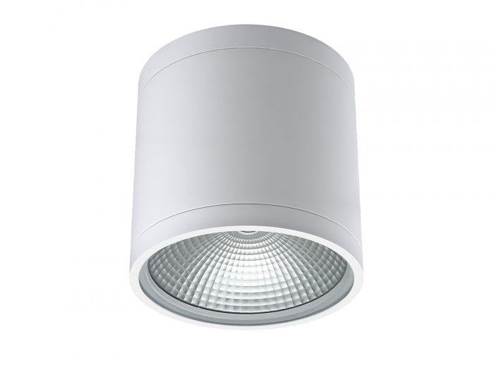 Alcon Lighting 11236-DIR Pavo Architectural LED 6 Inch Cylinder Surface Ceiling Mount Direct Down Light Fixture