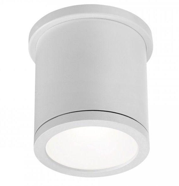 Wac Fm W2605 Tube Ceiling Mount Outdoor Led Light Fixture Alconlighting Com