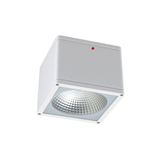Alcon Lighting 11224-EM Pavo Architectural LED 6 Inch Square Surface Ceiling Mount Direct Down Light Fixture with Integral Emergency Backup   IP65