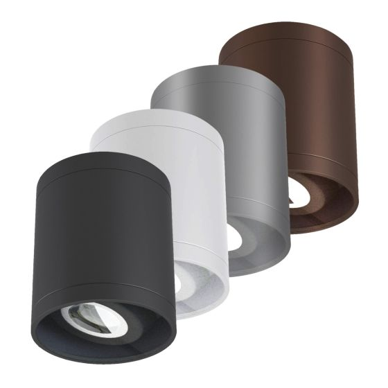Alcon 11235-ADJ LED Cylinder Adjustable Ceiling Light