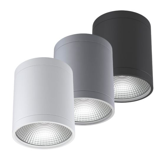 Alcon 11235-DIR LED Cylinder Ceiling Light