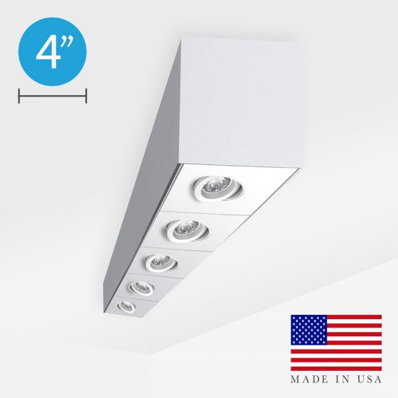 Alcon 11246-S Linear Surface-Mounted Adjustable Ceiling Spot Light Box
