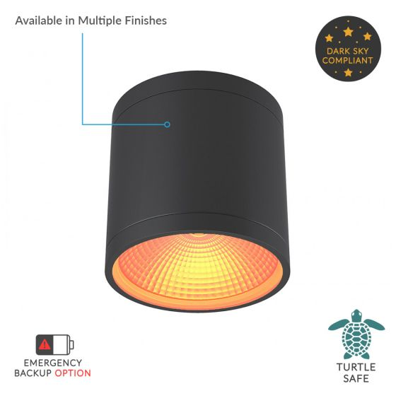 Alcon Lighting 11224-TF-R Pavo Turtle Friendly Dark Sky Architectural Amber LED 6 Inch Cylinder Surface Ceiling Mount Direct Down Light Fixture