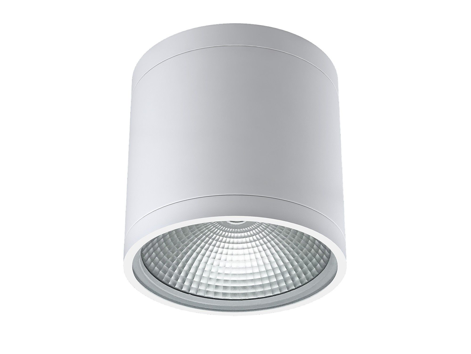 Alcon lighting 11236 dir pavo architectural led 6 inch cylinder alcon lighting 11236 dir pavo architectural led 6 inch cylinder surface ceiling mount direct down light fixture aloadofball Image collections