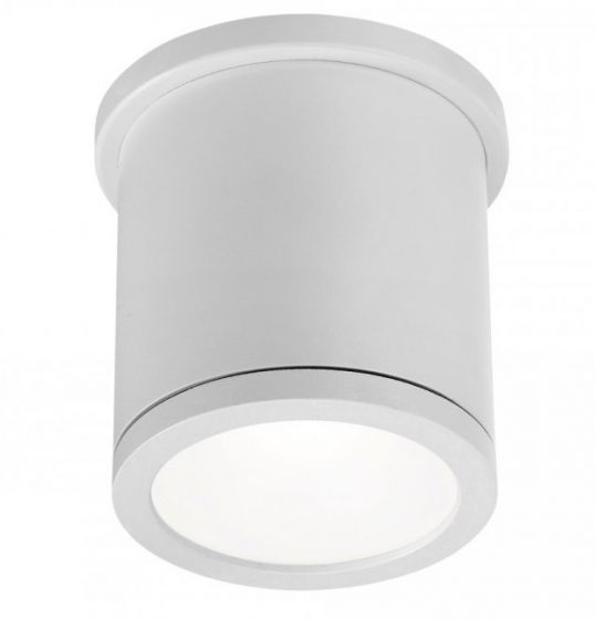 WAC FM-W2605 Tube Ceiling Mount Outdoor LED Light Fixture | 16 Watts 800 Lumens