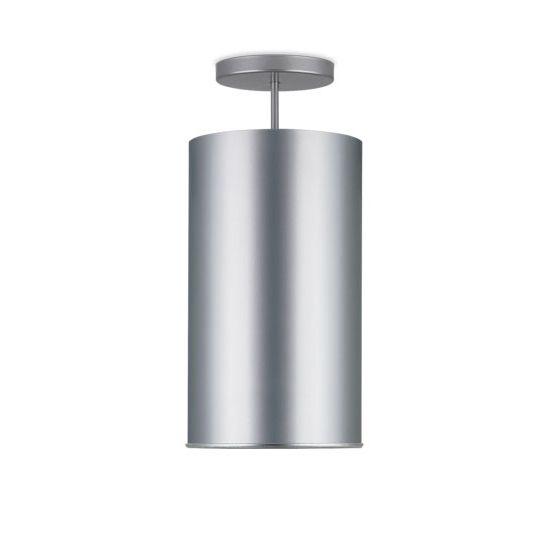 Delray Lighting CP8100 8 Inch Cylinder Vertical Lamp Pendant Downlight