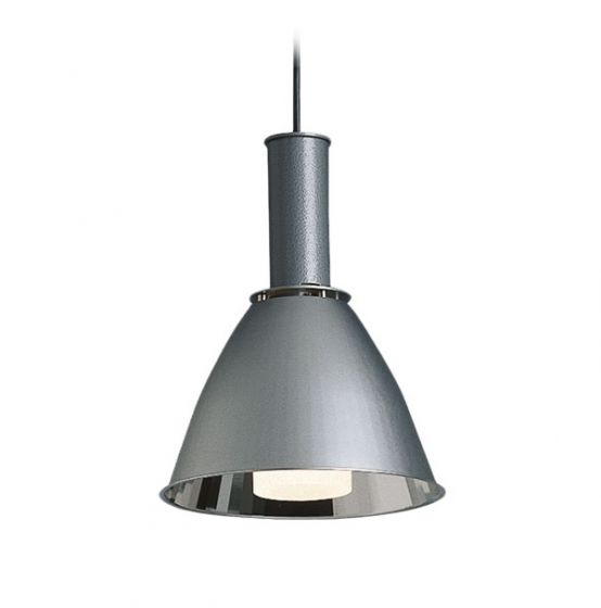 Delray Lighting 232 Aspect Metal Reflector with Glass Luminaire Fluorescent Architectural Pendant