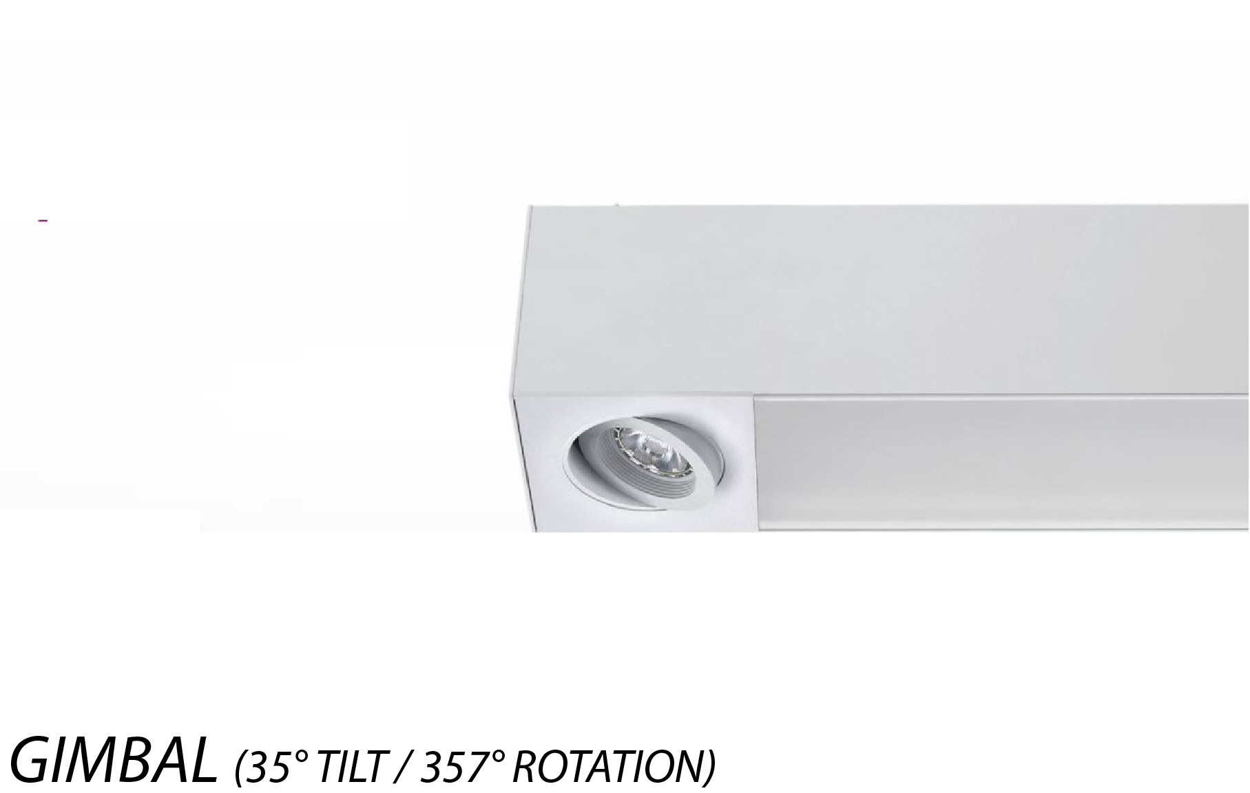 Alcon Lighting 12000 2 G 4F Tesla Dual Gimbal Spot Light Architectural Led